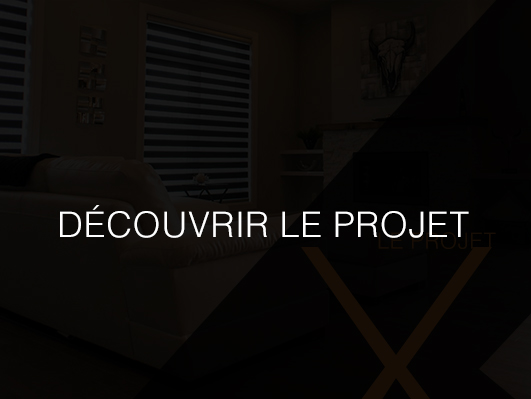 Découvrir le projet de condominiums luxueux - Condo X15